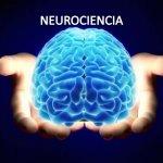 Hacia un proceso de enseñanza-aprendizaje consciente